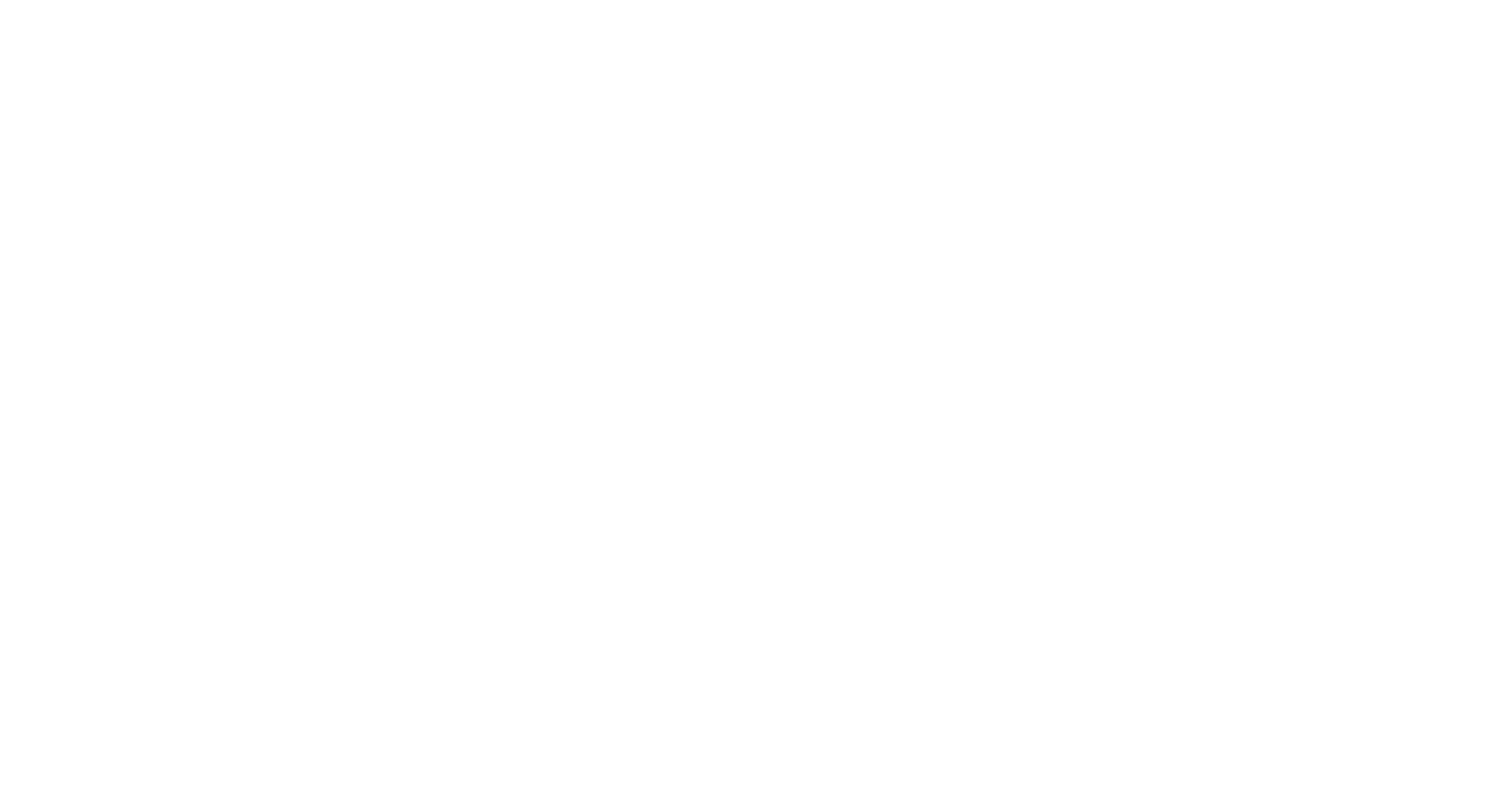 LOGO FINXS INV